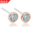 Topaz December Birthstone Earrings *SALE*