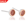 Carnelian July Birthstone Earrings *SALE*