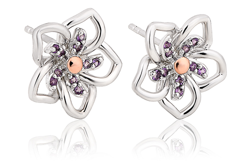Violet Stud Earrings
