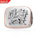 Welsh Dragon Milestones Bead Charm *SALE*