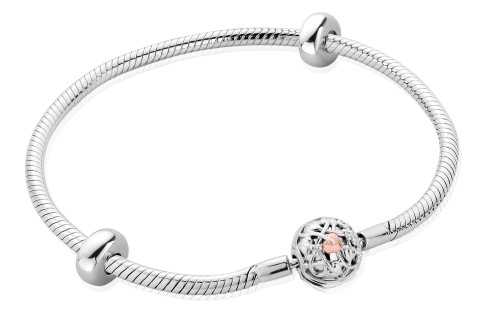 Tree of Life Milestones Bracelet (19cm)