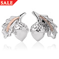 Royal Clogau® Oak Stud Earrings