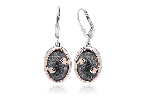 Heart of Wales Earrings