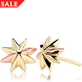 Seren Earrings *SALE*