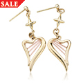 Heartstrings<sup>&reg;</sup> Earrings *SALE*