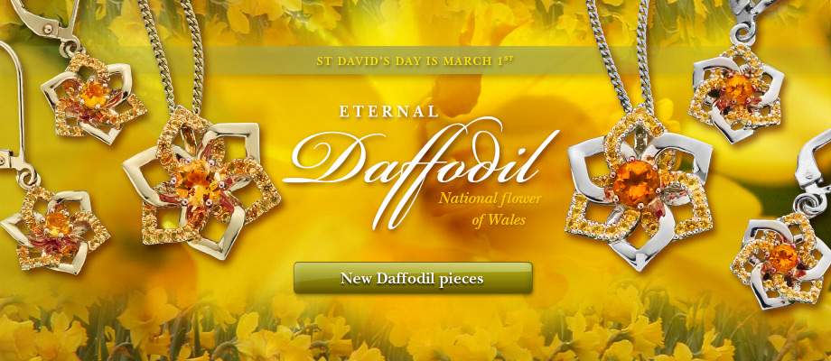 Eternal Daffodil collection